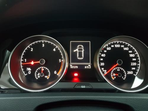 Golf 4Motion 1.6 TDI (13)